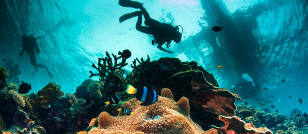 Mozambique For Scuba Diving, Backpacking, Beaches and Privacy